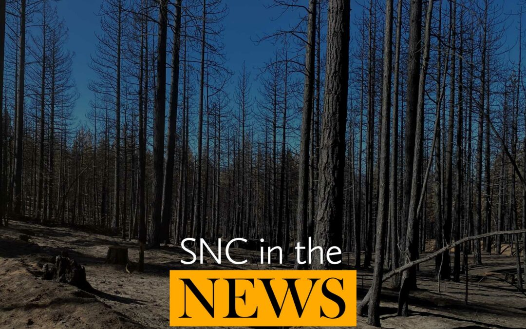 SNC in the news: fourth quarter 2020