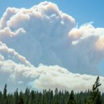 A large plume of smoke rises above a forested ridgeline