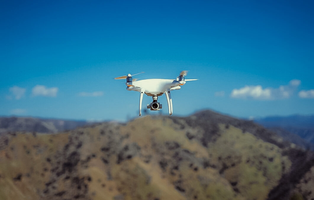 Forest structure from above: using drones for restoration planning and monitoring