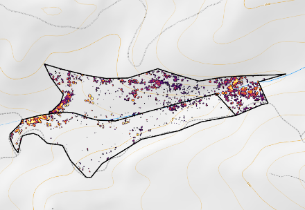 Simplified overhead visualization of forest structure showing a variety of tree densities and heights on a topographic map.