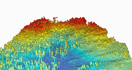 Model of forest structure showing a variety of tree densities and heights.