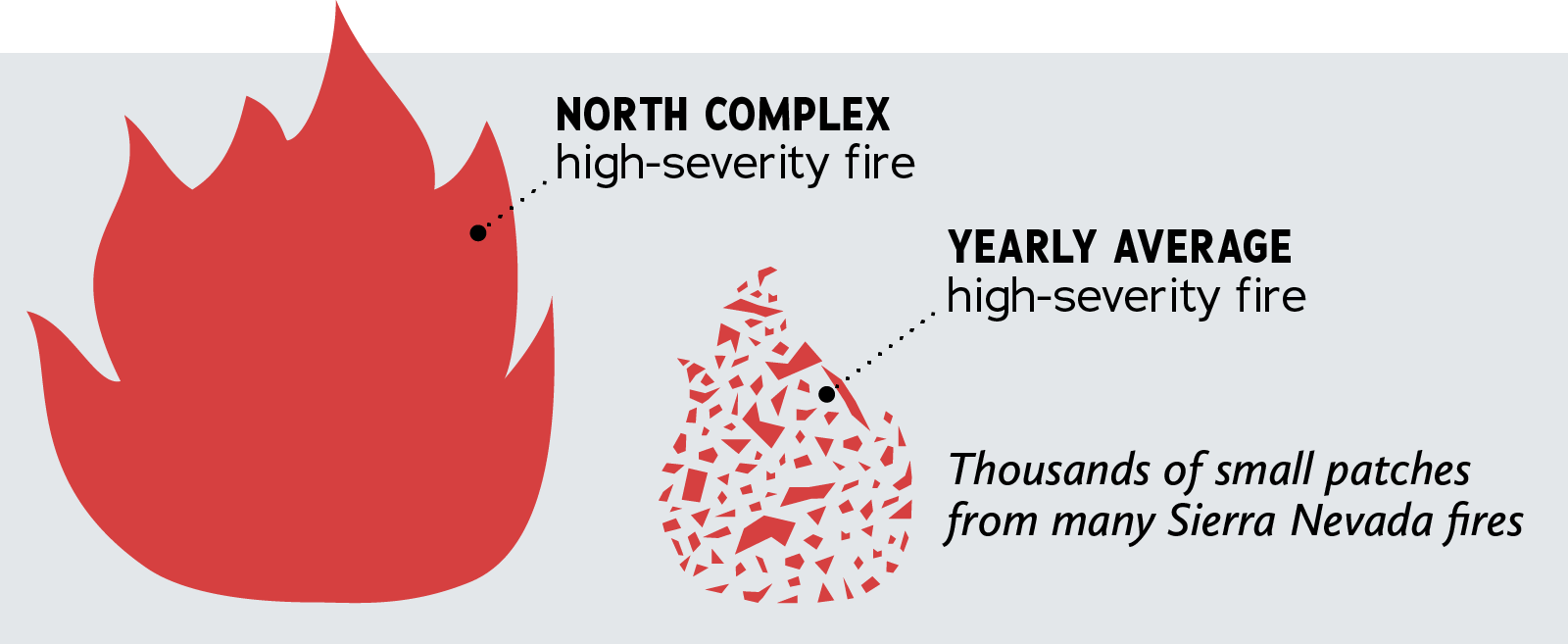 Large single flame representing the North Complex fire's high severity area. This is compared to a smaller grouping of small patches that represent the yearly average of high severity fire. This is thousands of small patches from many Sierra fires.