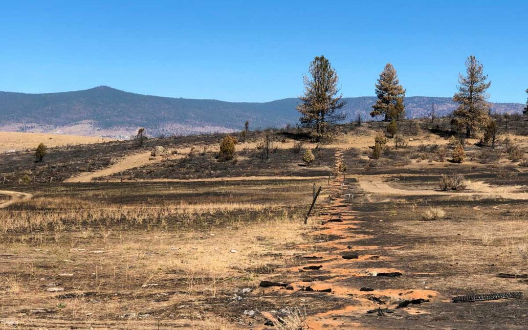 SNC projects protected Susanville from the Sheep Fire