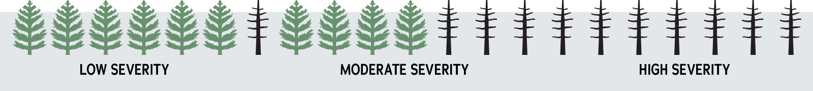 low severity: 6 out of 7 trees are alive. Moderate severity: 4 out of 7 trees are alive. High severity: all trees are dead.