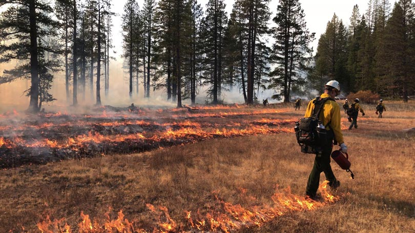 SNC funds prescribed fire & cultural burning training project